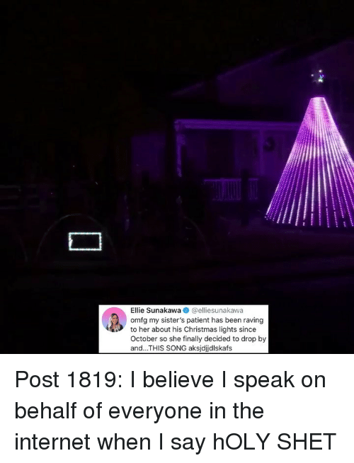 Christmas, Internet, and Memes: Ellie Sunakawa @elliesunakawa  omfg my sister's patient has been raving  to her about his Christmas lights since  October so she finally decided to drop by  and...THIS SONG aksjdjdlskafs Post 1819: I believe I speak on behalf of everyone in the internet when I say hOLY SHET
