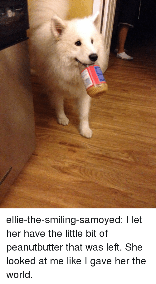 Target, Tumblr, and Blog: ellie-the-smiling-samoyed:  I let her have the little bit of peanutbutter that was left. She looked at me like I gave her the world.