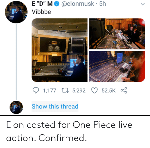 Casted: Elon casted for One Piece live action. Confirmed.
