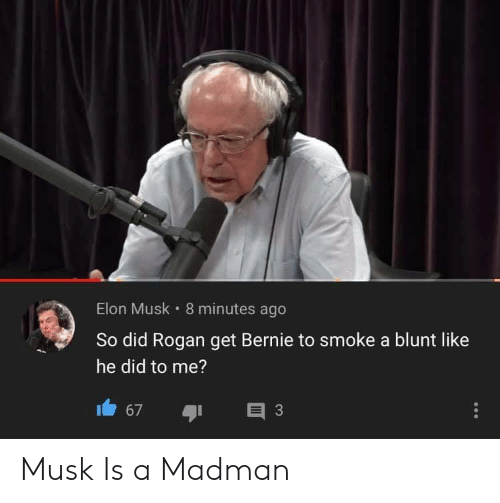 Madman: Elon Musk 8 minutes ago  So did Rogan get Bernie to smoke a blunt like  he did to me?  3  67 Musk Is a Madman