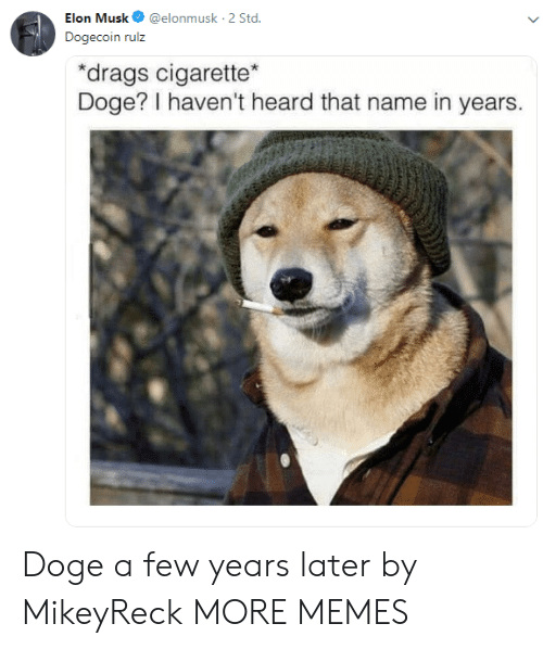 std: Elon Musk@elonmusk 2 Std  Dogecoin rulz  drags cigarette  Doge? I haven't heard that name in years. Doge a few years later by MikeyReck MORE MEMES