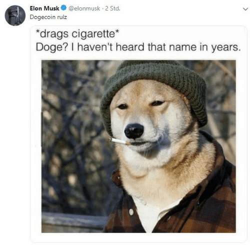 std: Elon Musk@elonmusk 2 Std  Dogecoin rulz  drags cigarette  Doge? I haven't heard that name in years.