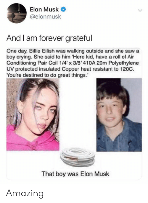 copper: Elon Musk  @elonmusk  And I am forever grateful  One day, Billie Eilish was walking outside and she saw a  boy crying. She said to him Here kid, have a roll of Air  Conditioning Pair Coi 14'x 3/B' 410A 20m Polyethylene  UV protected insulated Copper heat resistant to 120C.  You're destined to do great things.  That boy was Elon Musk Amazing