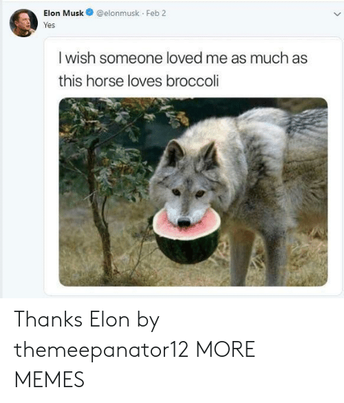 broccoli: Elon Musk@elonmusk Feb 2  res  I wish someone loved me as much as  this horse loves broccoli Thanks Elon by themeepanator12 MORE MEMES