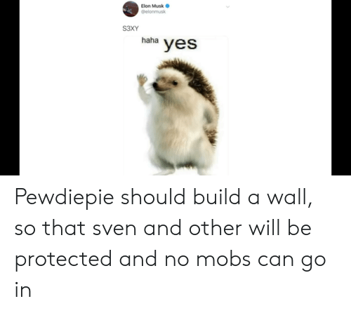 Haha, Elon Musk, and Yes: Elon Musk  @elonmusk  S3XY  haha  yes Pewdiepie should build a wall, so that sven and other will be protected and no mobs can go in