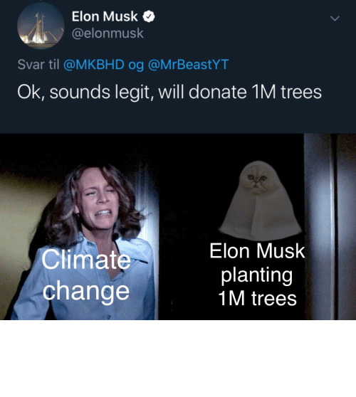 til: Elon Musk  @elonmusk  Svar til @MKBHD og @MrBeastYT  Ok, sounds legit, will donate 1M trees  Elon Musk  Climate  planting  1M trees  change Elon is planting 1M trees now