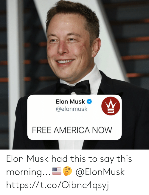elon musk: Elon Musk had this to say this morning...🇺🇸🤔 @ElonMusk https://t.co/Oibnc4qsyj
