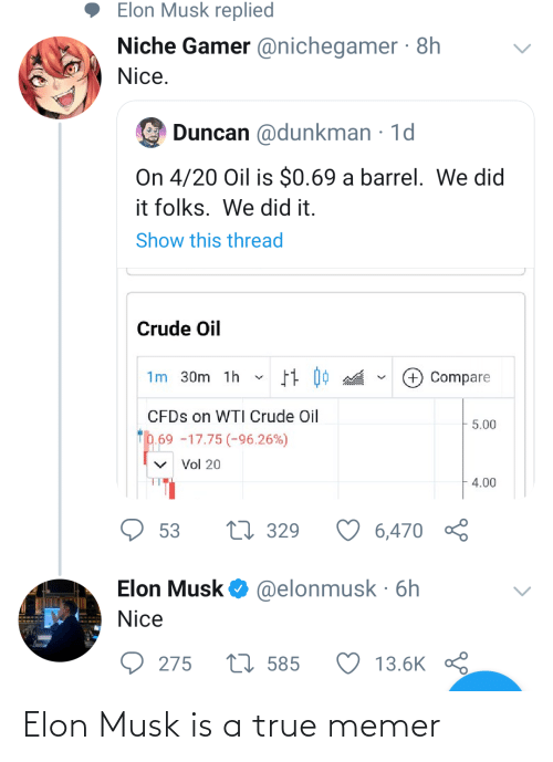 elon musk: Elon Musk is a true memer