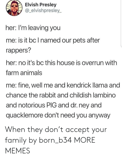 Animals, Dank, and Family: Elvish Presley  @_elvishpresley  her: I'm leaving you  me: is it bc l named our pets after  rappers?  her: no it's bc this house is overrun with  farm animals  me: fine, well me  chance the rabbit and childish lambino  and notorious PIG and dr. ney and  quacklemore don't need you anyway  and kendrick lama and When they don't accept your family by born_b34 MORE MEMES