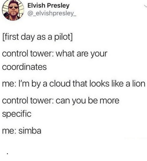 tower: Elvish Presley  @_elvishpresley  L  [first day as a pilot]  control tower: what are your  coordinates  me: I'm by a cloud that looks like a lion  control tower: can you be more  specific  me: simba .