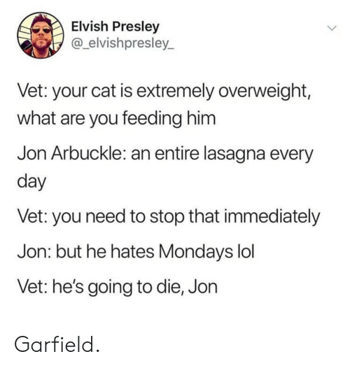 Stop That: Elvish Presley  @_elvishpresley_  Vet: your cat is extremely overweight,  what are you feeding him  Jon Arbuckle: an entire lasagna every  day  Vet: you need to stop that immediately  Jon: but he hates Mondays lol  Vet: he's going to die, Jon Garfield.