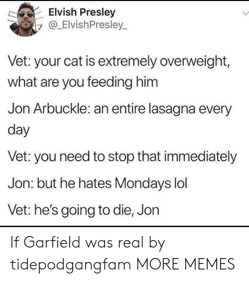 Stop That: Elvish Presley  y@_ElvishPresley.  Vet: your cat is extremely overweight,  what are you feeding him  Jon Arbuckle: an entire lasagna every  day  Vet: you need to stop that immediately  Jon: but he hates Mondays lol  Vet: he's going to die, Jon If Garfield was real by tidepodgangfam MORE MEMES