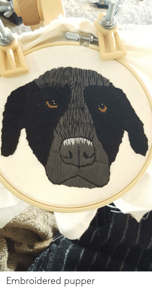 Aww Memes: Embroidered pupper