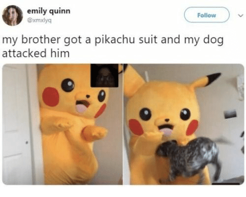Pikachu, Got, and Dog: emily quinn  Follow  xmxlyq  my brother got a pikachu suit and my dog  attacked him