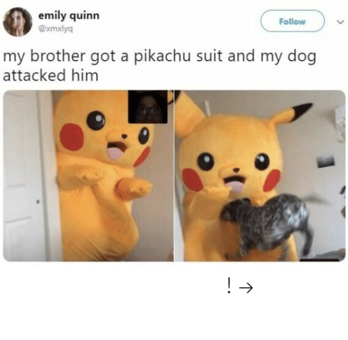 Pikachu, Pinterest, and Got: emily quinn  Follow  xmxlyq  my brother got a pikachu suit and my dog  attacked him 𝘍𝘰𝘭𝘭𝘰𝘸 𝘮𝘺 𝘗𝘪𝘯𝘵𝘦𝘳𝘦𝘴𝘵! → 𝘤𝘩𝘦𝘳𝘳𝘺𝘩𝘢𝘪𝘳𝘦𝘥