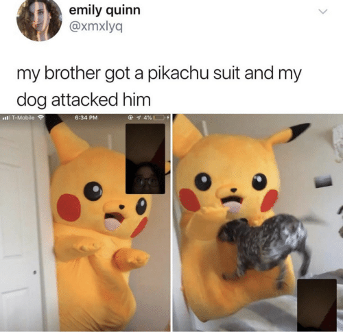 Pikachu, T-Mobile, and Mobile: emily quinn  @xmxlyq  my brother got a pikachu suit and my  dog attacked him  T-Mobile  6:34 PM