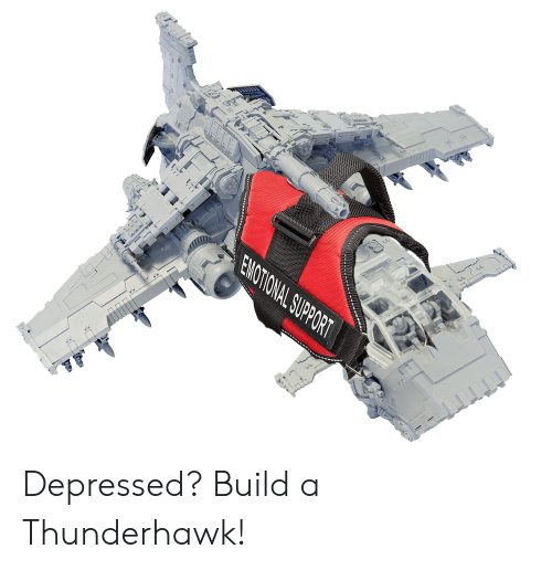 Build A, Build, and Depressed: EMOTIONAL SUPPORT Depressed? Build a Thunderhawk!