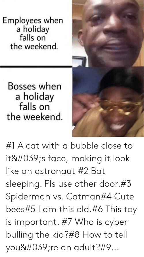 bulling: Employees when  a holiday  falls on  the weekend.  Bosses when  a holiday  falls on  the weekend. #1 A cat with a bubble close to it's face, making it look like an astronaut #2 Bat sleeping. Pls use other door.#3 Spiderman vs. Catman#4 Cute bees#5 I am this old.#6 This toy is important. #7 Who is cyber bulling the kid?#8 How to tell you're an adult?#9...