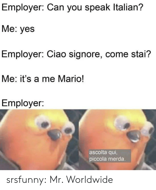 Mario: Employer: Can you speak Italian?  Me: yes  Employer: Ciao signore, come stai?  Me: it's a me Mario!  Employer:  ascolta qui,  piccola merda. srsfunny:  Mr. Worldwide