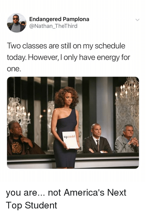 Energy, Schedule, and Today: Endangered Pamplona  @Nathan_TheThird  Iwo classes are still on my schedule  today. However, l only have energy for  one you are... not America's Next Top Student