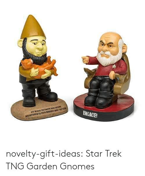 Star Trek, Tumblr, and Blog: ENGAGE!  ACCESTOMSOTO YT SENIRY NPT PATTET novelty-gift-ideas:  Star Trek TNG Garden Gnomes
