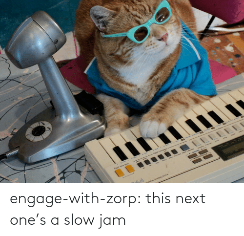 Tumblr, Blog, and Http: engage-with-zorp: this next one's a slow jam