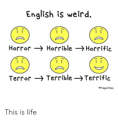 horrible: English is weird  Horror Horrible Horrific  Terror Terrible -Terrific  TidyWrities This is life