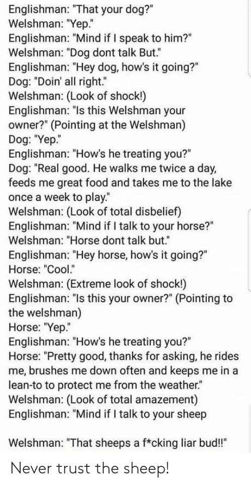 "feeds: Englishman: ""That your dog?""  Welshman: ""Yep.""  Englishman: ""Mind if I speak to him?""  Welshman: ""Dog dont talk But.""  Englishman: ""Hey dog, how's it going?""  Dog: ""Doin' all right.""  Welshman: (Look of shock!)  Englishman: ""ls this Welshman your  owner?"" (Pointing at the Welshman)  Dog: ""Yep.  Englishman: ""How's he treating you?""  Dog: ""Real good. He walks me twice a day,  feeds me great food and takes me to the lake  once a week to play.  Welshman: (Look of total disbelief)  Englishman: ""Mind if I talk to your horse?""  Welshman: ""Horse dont talk but.""  Englishman: ""Hey horse, how's it going?""  Horse: ""Cool.""  Welshman: (Extreme look of shock!)  Englishman: ""ls this your owner?"" (Pointing to  the welshman)  Horse: ""Yep""  Englishman: ""How's he treating you?""  Horse: ""Pretty good, thanks for asking, he rides  me, brushes me down often and keeps me in a  lean-to to protect me from the weather.  Welshman: (Look of total amazement)  Englishman: ""Mind if I talk to your sheep  Welshman: ""That sheeps a f*cking liar bud!"" Never trust the sheep!"