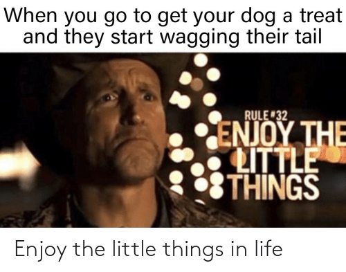 Life: Enjoy the little things in life
