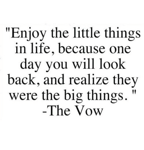 "The Vow: ""Enjoy the little things  in life, because one  day you will look  back, and realize they  were the big things.'""  The Vow"
