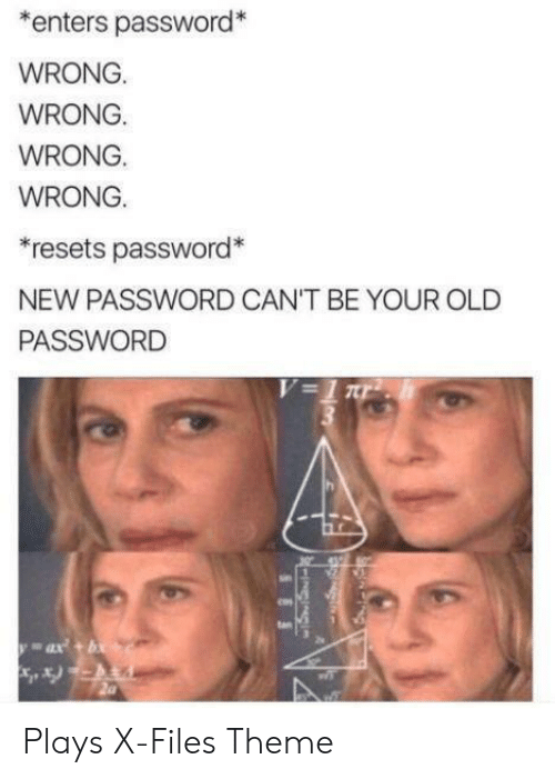 Your Old: enters password*  WRONG.  WRONG.  WRONG.  WRONG.  *resets password*  NEW PASSWORD CAN'T BE YOUR OLD  PASSWORD  V=1 ar  ax+b  SES Plays X-Files Theme