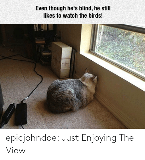 Tumblr, Blog, and The View: epicjohndoe:  Just Enjoying The View