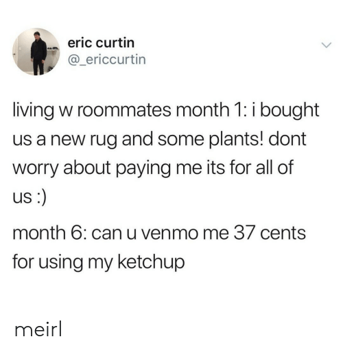 Venmo, Living, and MeIRL: eric curtin  @_ericcurtin  living w roommates month 1: i bought  us a new rug and some plants! dont  worry about paying me its for all of  US  month 6: can u venmo me 37 cents  for using my ketchup meirl