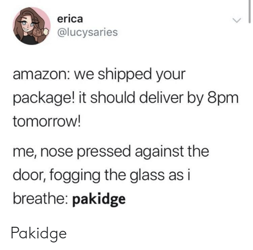 Pressed: erica  @lucysaries  amazon: we shipped your  package! it should deliver by 8pm  tomorrow!  me, nose pressed against the  door, fogging the glass as i  breathe: pakidge Pakidge