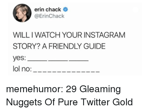 Iwatch: erin chack  @ErinChack  WILL IWATCH YOUR INSTAGRAM  STORY? A FRIENDLY GUIDE  yes:  lol no: memehumor:  29 Gleaming Nuggets Of Pure Twitter Gold