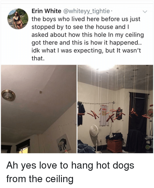 Dogs, Love, and Memes: Erin White @whiteyy_tightie  the boys who lived here before us just  stopped by to see the house and I  asked about how this hole In my ceiling  got there and this is how it happened..  idk what I was expecting, but It wasn't  that.  ACAR Ah yes love to hang hot dogs from the ceiling