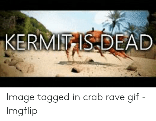 ERMIEIS DEAD Image Tagged in Crab Rave Gif - Imgflip | Gif