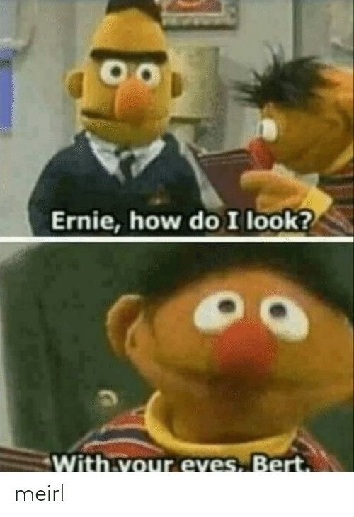 MeIRL, How, and Look: Ernie, how do I look?  With.vour eves, Bert. meirl