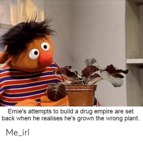 Empire, Irl, and Drug: Ernie's attempts to build a drug empire are set  back when he realises he's grown the wrong plant. Me_irl