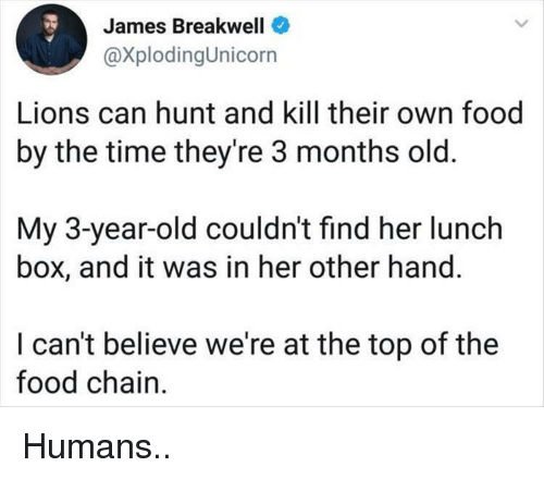 Food, Lions, and Time: es Breakwell  @XplodingUnicorn  Jam  Lions can hunt and kill their own food  by the time they're 3 months old.  My 3-year-old couldn't find her lunch  box, and it was in her other hand.  I can't believe we're at the top of the  food chain Humans..