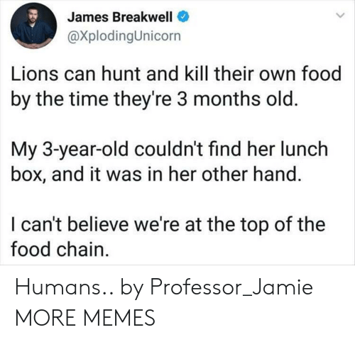 Dank, Food, and Memes: es Breakwell  @XplodingUnicorn  Jam  Lions can hunt and kill their own food  by the time they're 3 months old.  My 3-year-old couldn't find her lunch  box, and it was in her other hand.  I can't believe we're at the top of the  food chain Humans.. by Professor_Jamie MORE MEMES
