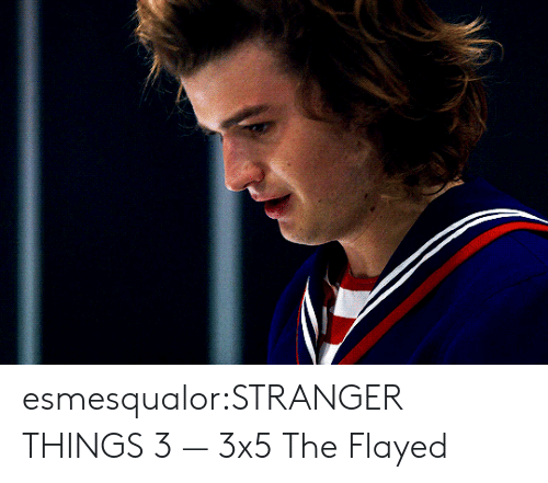 Target, Tumblr, and Blog: esmesqualor:STRANGER THINGS 3 — 3x5 The Flayed