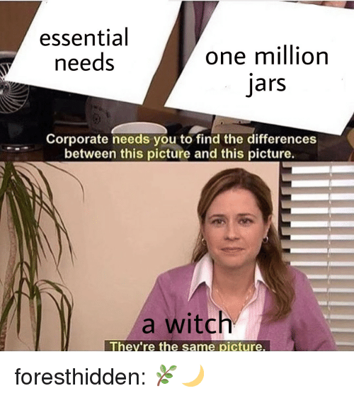Tumblr, Blog, and Corporate: essential  needs  one million  jars  Corporate needs you to find the differences  between this picture and this picture.  a witch  They're the same picture. foresthidden: 🌿🌙