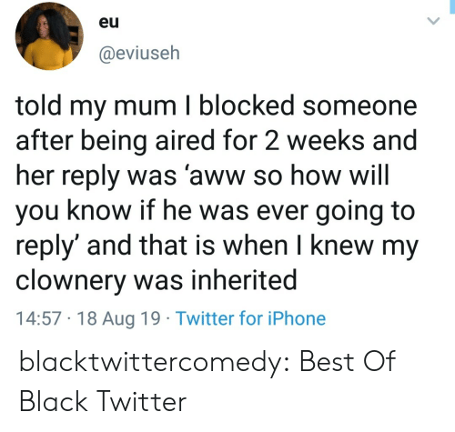 Aww, Iphone, and Tumblr: eu  @eviuseh  told my mum I blocked someone  after being aired for 2 weeks and  her reply was 'aww so how will  you know if he was ever going to  reply' and that is when I knew my  clownery was inherited  14:57 18 Aug 19 Twitter for iPhone blacktwittercomedy:  Best Of Black Twitter