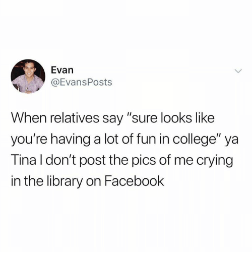 "College, Crying, and Dank: Evan  @EvansPosts  When relatives say ""sure looks like  you're having a lot of fun in college"" ya  Tina l don't post the pics of me crying  in the library on Facebook"