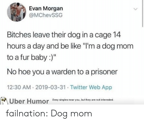 """Dog In: Evan Morgan  @MChevSSG  Bitches leave their dog in a cage 14  hours a day and be like """"I'm a dog mom  to a fur baby:)""""  No hoe you a warden to a prisoner  12:30 AM 2019-03-31 Twitter Web App  Sexy singies near you, but they are not interested  Uber  Humor failnation:  Dog mom"""