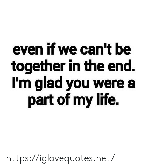 in the end: even if we can't be  together in the end.  I'm glad you were a  part of my life. https://iglovequotes.net/