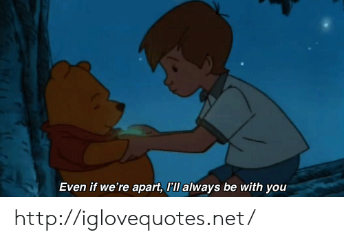 Http, Net, and You: Even if we're apart, ll always be with you http://iglovequotes.net/