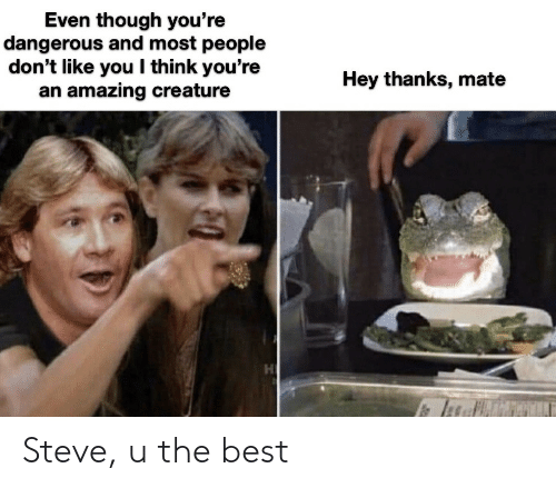 mate: Even though you're  dangerous and most people  don't like you I think you're  an amazing creature  Hey thanks, mate Steve, u the best