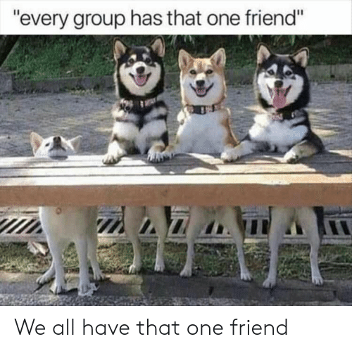 """We All Have That One Friend: """"every group has that one friend"""" We all have that one friend"""